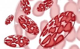 Infectiile nozocomiale1